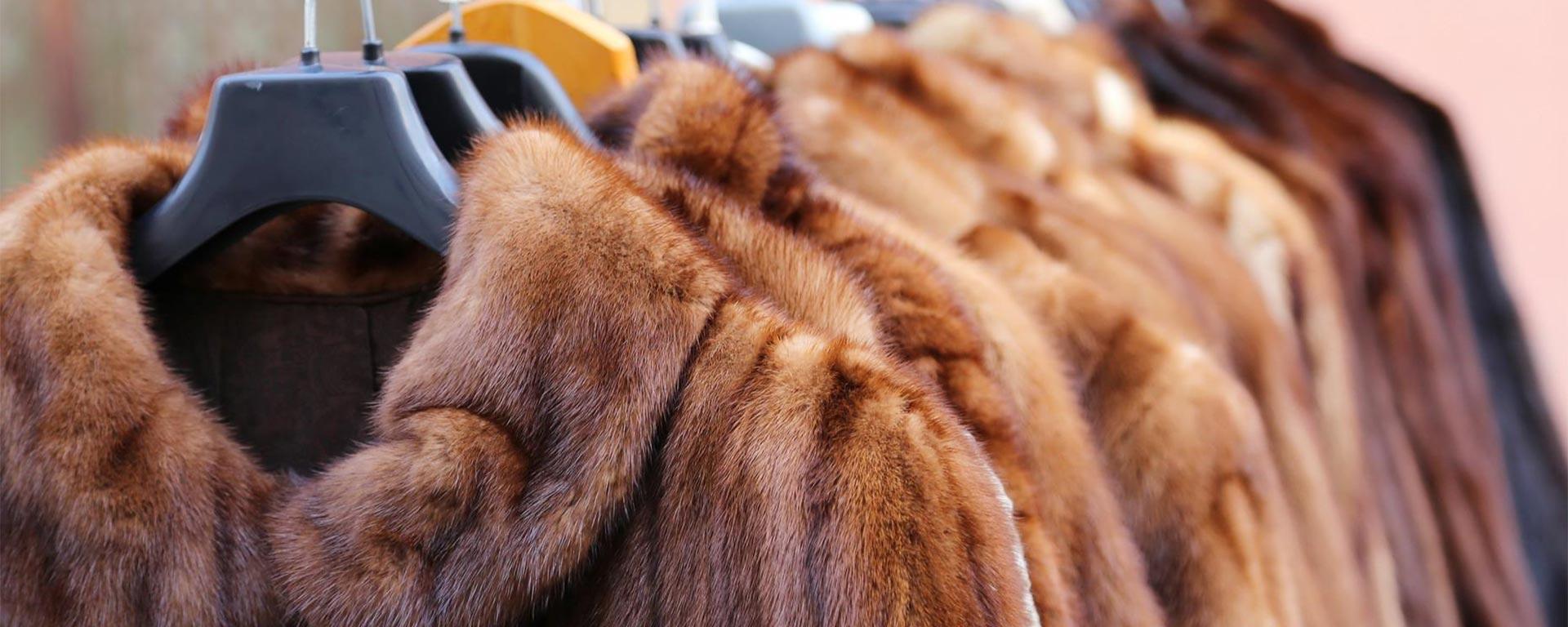 Humane Society Fur Ban